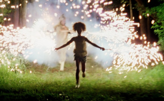 Beasts of the Southern Wild, fireworks scene